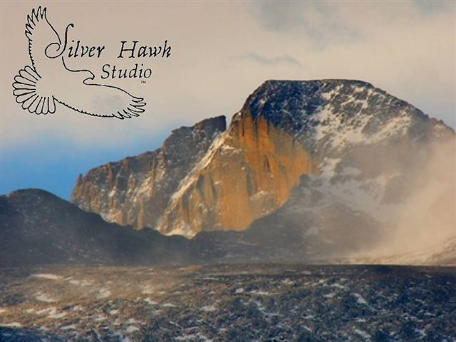 Silver Hawk Studio logo